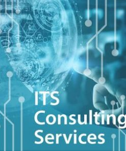 ITS Consulting Services rseenf qdxyrv 247x296 - Information Technology (IT) Consulting